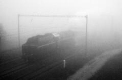 Foggy early morning (Tom Markovi) Tags: bw grain high iso 12800 iso12800 pentax kr steam fog morning early black white blackwhite