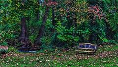IMG_0873-74Ptzl1scTBbLGE (ultravivid imaging) Tags: ultravividimaging ultra vivid imaging ultravivid colorful canon landscape canon5dmk2 bench autumn autumncolors brook creek