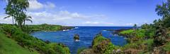 Waianapanapa State Park (milepost430media.com) Tags: waianapanapa park coast sea pacific ocean lave rocks water trees blue green paradise hana hawaii us unitedstates waves 70d dslr pailoa bay travel tourism palm tree