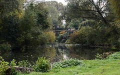 Rainbow bridge (PChamaeleoMH) Tags: autumn cherwell dogs highbridge oxford people pets rainbowbridge reflections river universityparks