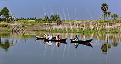 ~ mid-day fishing (sajan-164) Tags: alosh dupure midday fishing turag river dhaka bangladesh boat people reflections sajan164 explored