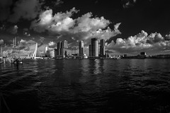 Skyline Rotterdam Infrared (Gatria) Tags: europe europa city skyline water wasser maas rotterdam netherlands nederland niederlande zuidholland holland erasmusbrug erasmus bridge clouds black white sky contrast infrared r72 filter 720nm canon 5d mk ii modified wide angle fisheye weitwinkel groothoek lens objektiv ef 815 mm