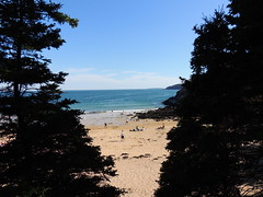 Sandy Beach (dale52.5) Tags: sandybeach acadia maine vacation outdoor landscape beach shore
