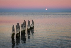 Fifty Point Posts Under the Super Moon #4 (otterman51) Tags: canada fall grimsby hamilton landscape night ontario winona abandoned autumn beachstrip blue colour colours decay fiftypointposts frozenintime moon nature outdoors photography ruins seascape sky supermoon water