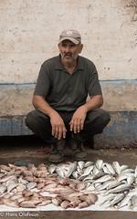 Essaouira (Hans Olofsson) Tags: 2016 essaouira marocko morocco fisherman fish fisk hamn
