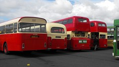 PMT Classics @ Showbus 2016 (Andy Reeve-Smith) Tags: leyland leopard atlantean titan marshall ncme northerncounties aec reliance weymann pmt potteriesmotortraction potteries stoke showbus 2016 showbus2016 donington doningtonpark castledonington derby derbyshire derbys