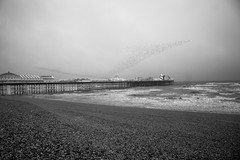 DSC00108 (iFot) Tags: mist ir infrared seaside seafront beach palacepier brightonpier pier starlings brighton