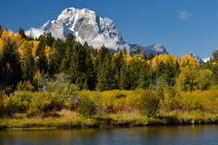 Grand Teton National Park (nebulous 1) Tags: grandtetonnationalpark grandtetonnp gtnp wyoming mtmoran snakeriver autumn river mountain landscape nature water trees nikon nebulous1 glene