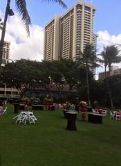 Lyxhotell i Waikiki (tompa2) Tags: hotell waikiki honolulu hawaii palm höghus