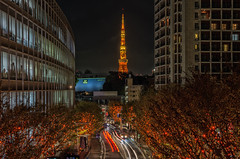 "Roppongi Hills Artelligent Christmas 2016 - ""CANDLE & AMBER"" (703) Tags: christmas japan lighttrails pentaxk5 roppongihills tokyo tokyotower cityscape laserbeam lightrails night nightscape nightscene nightview"