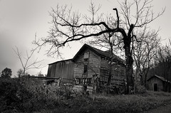 Devil in the Details (drei88) Tags: devilish dark bleak dreary rain cloudy windswept lonely rural barn charged dead forlorn d7k d7000 countryroad autumn stark neglect faded baddream nightmare greatexpectations searching