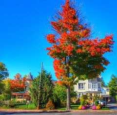 Niagara Falls Ontario ~ Canada ~  Bed and Breakfast ~ Bedham Hall ~  Historic River Dr (Onasill ~ Bill Badzo - 56 Million Views - Thank Yo) Tags: park travel autumn ontario canada flower macro building tree heritage fall sign architecture breakfast canon river garden lens anne rebel hotel site bed estate place bright outdoor dr district lodging victorian sigma style william tourist canadian niagara falls historic queen historical bb bedandbreakfast accomodation attraction sl1 revival on doran 18250mm onasill