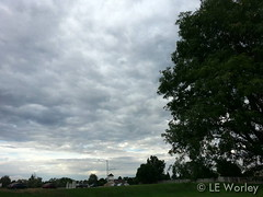 September 4, 2015 - Overcast skies in Thornton. (LE Worley)