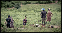 Youth Of Shan State..Farming boys (ayechan26) Tags: nikon myanmar farmer dslr shanstate lightroom d600 travelphotography 28300mmf3556