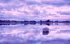 Loch Rusky, Trossachs, Scotland (J McSporran) Tags: scotland trossachs rusky lochrusky
