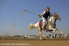 Tent Pegging in Punjab , Pakistan 3- Photo by Bilal Javaid