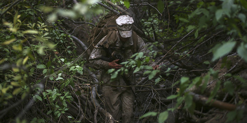 Jungle Warfare, From FlickrPhotos
