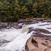 ohiopyle falls 08