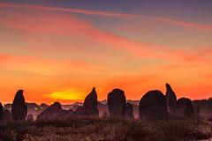 Les alignements de Kermario . (Faouic) Tags: bretagne menhirs morbihan brume carnac alignements mgalithes kermario