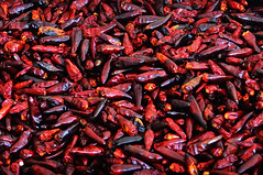 Peperoncini (ladybanne) Tags: hot pepper peperoncini