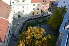Sopron, Tztorony (anuwintschalek) Tags: autumn dog tower museum october hungary herbst hund gordon boxer torn turm altstadt oldtown ungarn kalle sopron vanalinn sgis 2015 lapsed koer tiiu ungari muuseum quno tztorony sightseeingtower feuerturm d7k parun nikond7000 18140vr