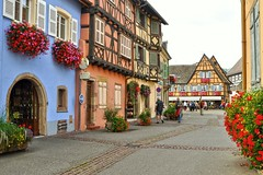 (yonca60) Tags: street flowers france wine medieval alsace streetscape winehouse vinery colorfulhouses wineroute eguisheim medievalhouses frenchtowns alsaz colorfulstreets colorfulhousesoftheworld