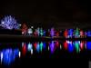 Vitruvian Lights 2015-2 (MikeyBNguyen) Tags: us texas unitedstates christmastree christmaslights christmastrees addison vitruvianpark vitruvianlights