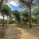 """Senderos de playa, Rota (Cádiz <a style=""""margin-left:10px; font-size:0.8em;"""" href=""""http://www.flickr.com/photos/127607003@N02/23143114364/"""" target=""""_blank"""">@flickr</a>"""