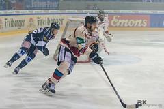 _RK (4 von 78) (rkphotografie.de) Tags: dresden nikon bad 70200 ec dresdner nauheim eishockey eislwen del2 d3s