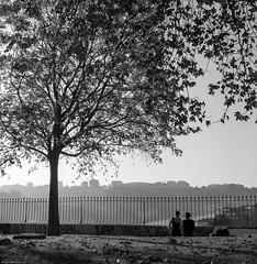 Shall we dance...? (Srgio Miranda) Tags: street blackandwhite bw 6x6 portugal monochrome rollei mediumformat photography streetphotography porto analogphotography 120mm kiev88 filmphotography kiev88cm filmisnotdead srgiomiranda squarephotography rpx400 sergiomiranda rolleirpx400 rolleirpx