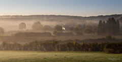 October morning (Zaphod Beeblebrox 1970) Tags: deutschland gegenlicht germany herbst morgensonne nrw nebel sonne sprockhvel autumn fog landscape mist sun sprockhvel