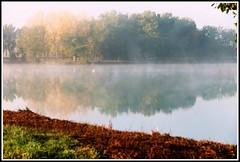 Brume sur le lac (Les photos de LN) Tags: nature automne lac brume brouillard couleurs teintes coloris lumire vaporation calme srnit beaut paysage fumeux arbres feuillage reflets