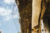 Till_Junker_20160930-_ILL5968 (till_junker) Tags: reet reetdach reetdachhaus dachdecker reetdachdecker reetdachdeckerjunker reinholdjunker stade alt oldhouses roof thatcher