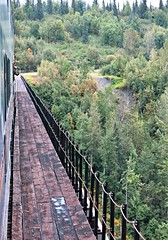 McKinley Explorer ~ over the bridge - HFF! (karma (Karen)) Tags: mckinleyexplorer alaska trains domedtrain tracks bridges fences trees spruce fencefridays hff topf25