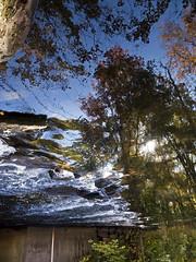 Fall Foliage (Boneil Photography) Tags: boneilphotography brendanoneil canon powershot g16 fall foliage water reflection flipped