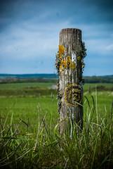 swirled (pamelaadam) Tags: scotland guess may spring 2014 digital fotolog thebiggestgroup faith spirituality symbol bullersofbuchan aberdeenshire guessed