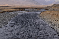 MAQ_0407 (MolviDSLR) Tags: deosair national park skardu gilgit baltistan northern areas pakistan brown bear wild life scenery landscape