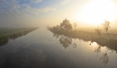 Cold morning in October (M a u r i c e) Tags: mist dew morning sunlight sunshine sunrise water polder efs1022mm wideangle trees netherlands sky reflections grass