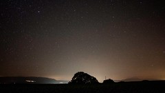 Night walk in the nature (vincentmagnenat) Tags: forest mountain hill jura life tree vaud switzerland galaxy stars walk night exposure longexposure