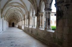 Monastère de Batalha - Cloître