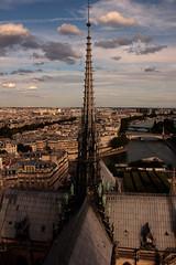 Gárgolas (Almu_Martinez_Jiménez) Tags: parís paris francia france belleza luz lught notredame torreeiffel opera notre dame
