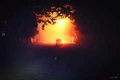 Heading into the fog (traptiantiwary) Tags: nightshoot fog roadtrip journey nature canondslr canon india
