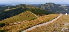 Widok w kierunku Grzesia i Bobrowca