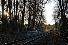 P2470317 (Lumixfan68) Tags: eisenbahn haltepunkte schwentinebahn kiel hein schönberg baustellen kielellerbek