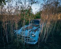 Bushwacker's Find (Pedalhead'71) Tags: parvin washington abandoned car
