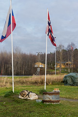 Border (Alexander Pugatschewski) Tags: kirkenes norway russia thenorth theborder flag flagpole road nature nameplate stand landscape litter dog pine spruce tree grass sky cloud cloudy autumn travel photography malamute house post wire