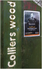 Colliers Wood, Gin Pit, Tyldesley, Rick Astley poster (Pitheadgear) Tags: rickastley ginpit tyldesley collierswood forestrycommission popstars singers male vocalists newtonlewillows