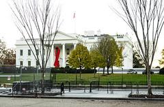 2016.12.01 World AIDS Day at The White House, Washington, DC USA 09203 (tedeytan) Tags: aidsribbon lgbtq remember sonya7sii wad16 wad2016 washingtondc equalityequalshealth redribbon whitehouse worldaidsday exif:model=ilce7sm2 exif:isospeed=400 camera:make=sony exif:aperture=40 exif:lens=fe2470mmf4zaoss exif:make=sony camera:model=ilce7sm2 exif:focallength=43mm