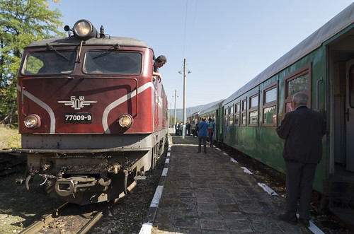 Trains at the Kostandovo narrow gauge railway station, 16.09.2015.