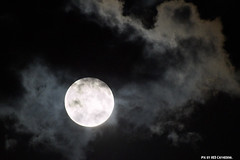 Full moon (Red Cathedral uses albums) Tags: blackandwhite anime car werewolf clouds lune noiretblanc zwartwit cosplay gothic goth rollerderby eerie fullmoon convention gore horror larp volle maan pleine loupgarou eventcoverage aztektv